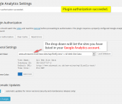 google-analytics-dashboard-for-wp-plugin-9
