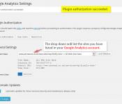 google-analytics-dashboard-for-wp-plugin-9