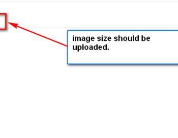 image-size-1