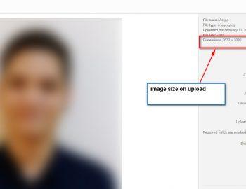 image-size-3