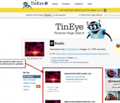 10-tineye