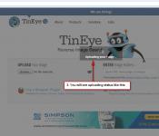 3-tineye