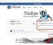 9-tineye