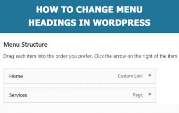 How to manage menu in WordPress