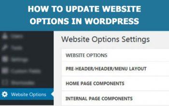 How to update website options in WordPress