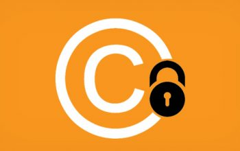 How to install Plugin WP-Copyright-Protection