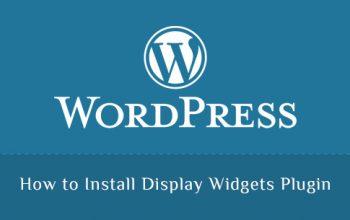 How to Install Display Widgets Plugin