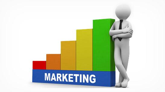 8 step Online Marketing programme