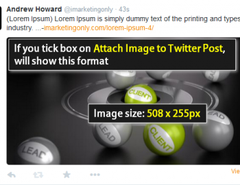 How to use Social Networks Auto Poster Plugin-11