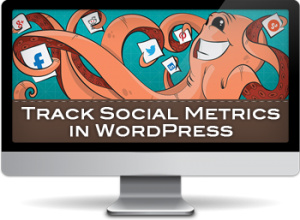 How to Use the Plugin to Track Social Metrics in WordPress